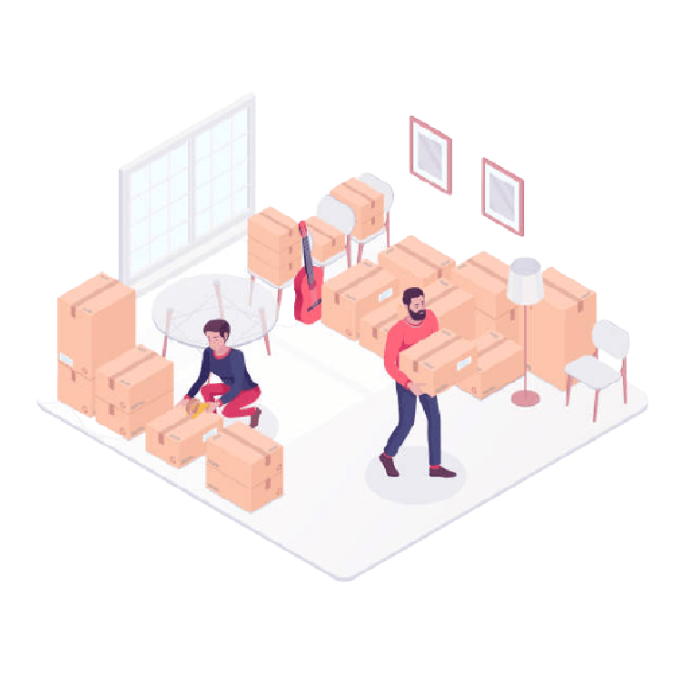Local Movers in Tampa